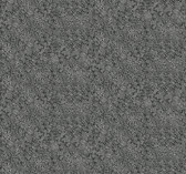Rifle Paper RI5111 - Champagne Dots Wallpaper Black/White