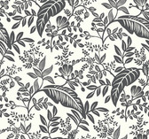 Rifle Paper RI5136 - Canopy Wallpaper Black/White