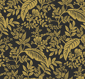 Rifle Paper RI5139 - Canopy Wallpaper Gold/Black