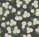 Rifle Paper RI5146 - Hydrangea Wallpaper Black/White