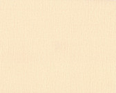Color Library II CL1884 - Vertical Woven Wallpaper Cream
