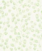 2979-37005-1 Mali Green Trail Wallpaper