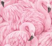 2814-803211 Horace Pink Flamingos Wallpaper