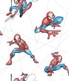 DI0939 Spider-Man Fracture Wallpaper