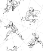 DI0940 Spider-Man Fracture Wallpaper