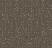 CI2351 Star Struck Wallpaper