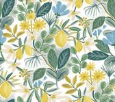PSW1318RL Amalfi Peel and Stick Wallpaper - Blue/Green