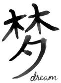 DWPK3698 - Dream Chinese Character Wall Art Kit