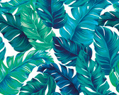 WALS0429 - Turquoise and Green Tropical Leaves Wall Mural