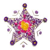 DWPK3835 - Blooming Star Wall Art Kit