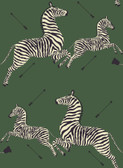 SCS3871 - Serengeti Green Zebra Safari Scalamandre Self Adhesive Wallpaper