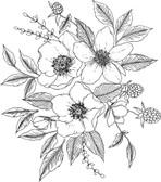 DWPK3902 - Love Karla Designs Anemone and Blackberry Wall Decal