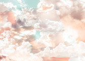 X7-1014 - Mellow Clouds Wall Mural