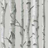 NU1694 - Mountain Birch Grey Peel & Stick Wallpaper