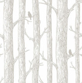 NU2413 - The Forest Peel & Stick Wallpaper