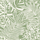 SS2577 - Jungle Leaves Wallpaper