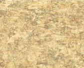 CH7924LM-LAKE FOREST LODGE BIRCH WALLPAPER -CREAM-GREY