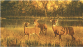 CH7984MLM-LAKE FOREST LODGE WHITE TAIL LAKE MURAL-BROWNS