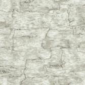 LAKE FOREST BIRCH BARK WALLPAPER-OFF WHITE