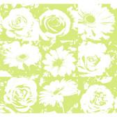 Risky Business II Petal Pusher Wallpaper RB4206 -Lime-White