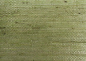 Grasscloth Book Grasscloth Wallpaper OL5555-Sage