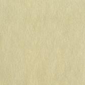 Light Tan LS6110NA Unpolished Faux Stone Wallpaper