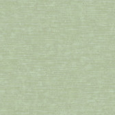 Moss Green NA0281 Unpolished Faux Wood Wallpaper