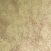 ARB260210 Arbor Rose Sylvia Distressed Texture Moss Wallpaper