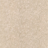 2623-001059-Gesso Taupe Plaster Texture