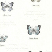 Admiral Butterflies and Script Grey Wallpaper 2532-20455