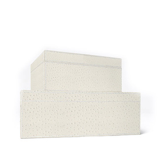 Zsa Zsa Ostrich Leather Boxes - Set of 2
