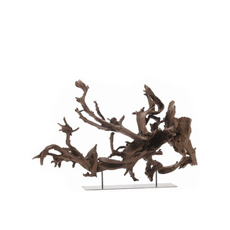 Large Kazu Root Sculpture