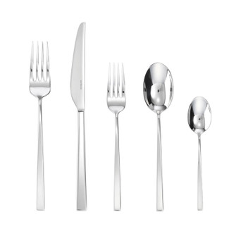 Linea Q Stainless Steel 5 Pcs Place Setting