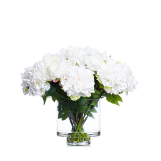 Cream Peonies In Footed Vase