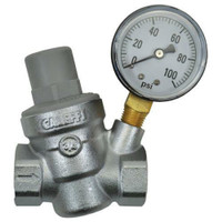 Dosatron Pressure Regulator w/ Gauge - 3/4 in FPT x FPT