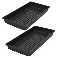 Super Sprouter Double Thick Tray 10 x 20 - No Hole Cs