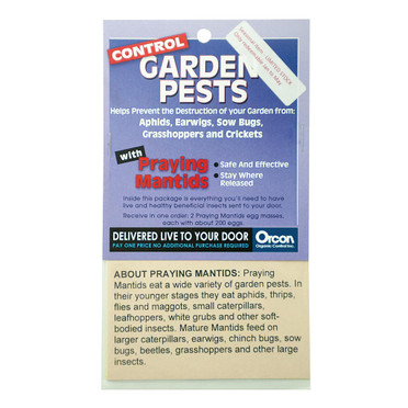 Orcon Orcon Praying Mantids Pre-Paid Certificate, 2 Egg Masses