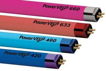 Eye PowerVEG Multi-Color Pack 4 ft 54W T5 Cs