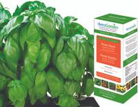AeroGrow Pesto Basil Seed Kit AERO504