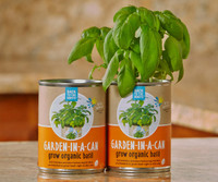 Back to the Roots Garden in a Can Basil 12/cs BRGCB