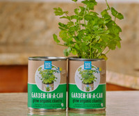 Back to the Roots Garden in a Can Cilantro 12/cs BRGCC