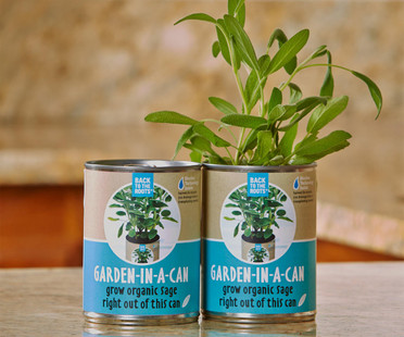Back to the Roots Garden in a Can Sage 12/cs BRGCS