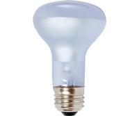 Agrosun Agrosun Dayspot Incandescent Bulb, 60W BURP413