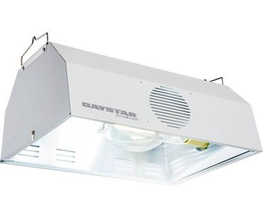 Daystar Daystar Reflector DAUN