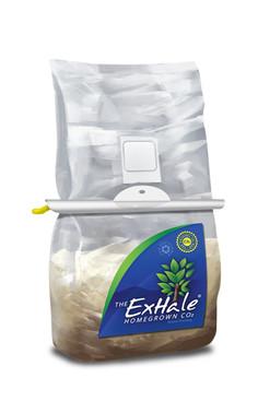 ExHale CO2 ExHale-The Original CO2 Bag EX50001