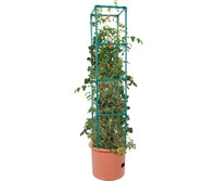 Hydrofarm Heavy Duty Tomato Barrel w/Tower 4/cs GCTB2