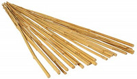 GROWT GROWT 4 Bamboo Stakes, pack of 25 HGBB4