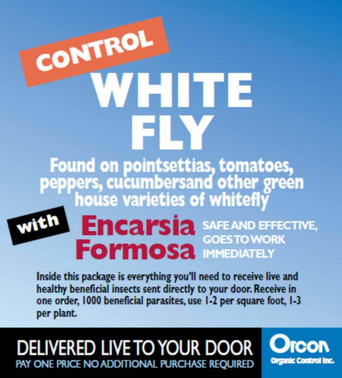 Orcon Encarsia Formosa Mail-Back, pack of 5 OREF