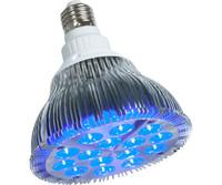 powerPAR powerPAR LED Bulb-Blue 15W/E27 6/cs PPB1002