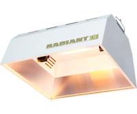 Radiant Radiant Ref DE Unit 24/plt RDUNDE